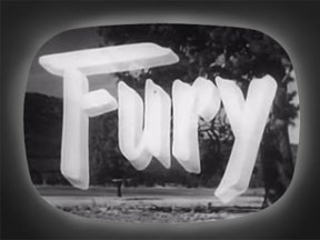 fury tv show